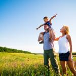 assurance-vie et rendement