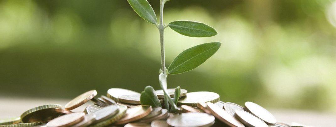 Comprendre le fonctionnement d'un contrat de capitalisation