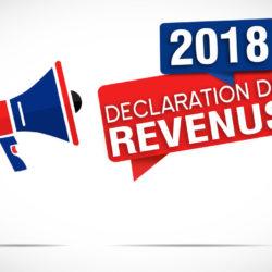 Correction en ligne de la déclaration de revenus 2018